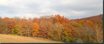 SE OK fall colors 108