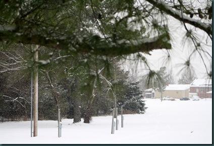 More snow 030
