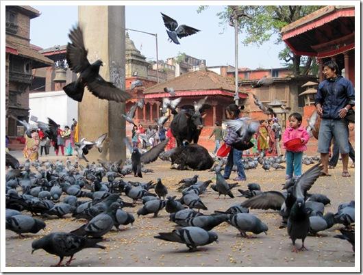 Basantapur2