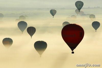 Fog_amarjits (13)