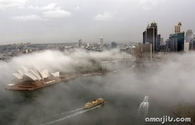 Fog_amarjits (3)
