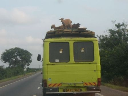 only_in_africa_05