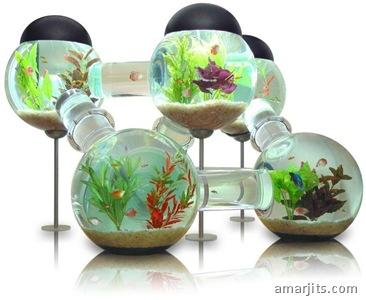 octopus-aquarium-no-stand