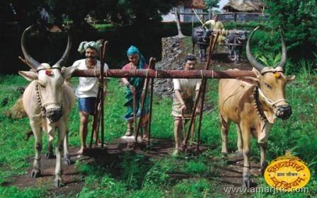 Wax-Village-amarjits-com (7)