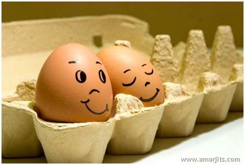 Eggs-amarjits (9)