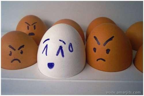 Eggs-amarjits (13)