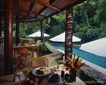 Jungle-Hotel-amarjits-com (8)