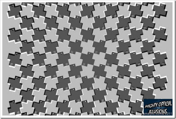 Illusions (3)