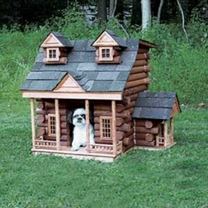 Dog-House-amarjits (19)