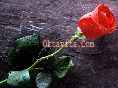 Hadiah Valentine