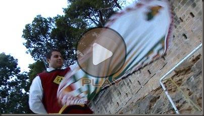 bandiera_2009