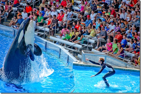 shamu and trainer (1 of 1)