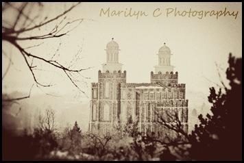 Logan Utah Temple Vintage 8x12 MCP
