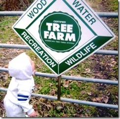 Caleb_Tree_Farm_250