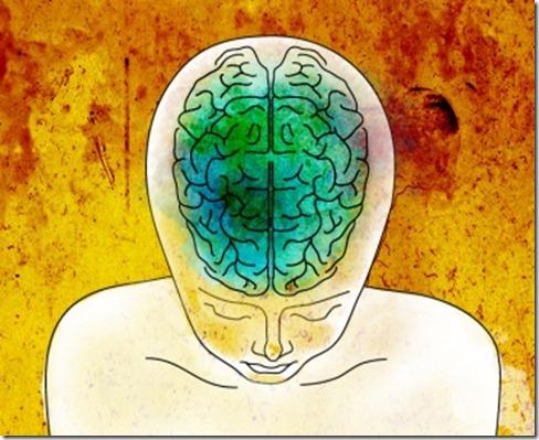 meditacion-cortex