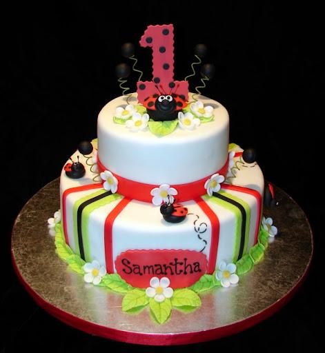 Lady Bug Cake 2-20-10 003.jpg