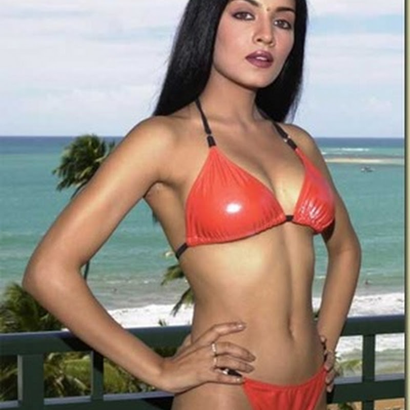 Celina Jaitley top most sexiest babe