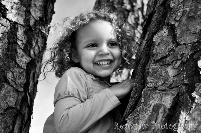 willow065_1