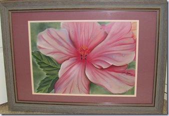 natureinpastels hibiscus 517