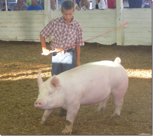 parker with pig at fair