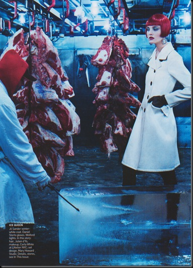 caroline_trentini-ph.steven_klein-vogueUs-november2004-the_big_chill-2