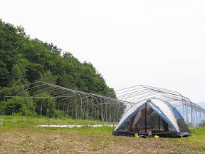 ハウス前にテント。広さは約2畳