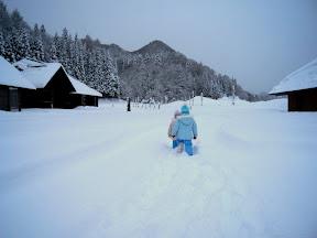 積雪50cmくらいかな?
