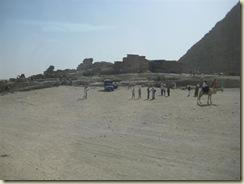 Giza Camel Ridesi (Small)