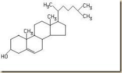 Blog de Bioquímica: Novembro 2010
