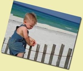 beachdrew