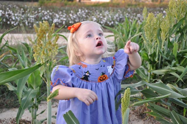 [grain saugrum and halloween dress 101510 (6)[5].jpg]