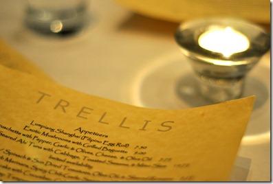 trellis date night 102910 (1)