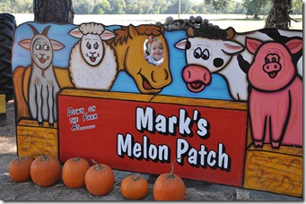 marks melons 102210 (108)