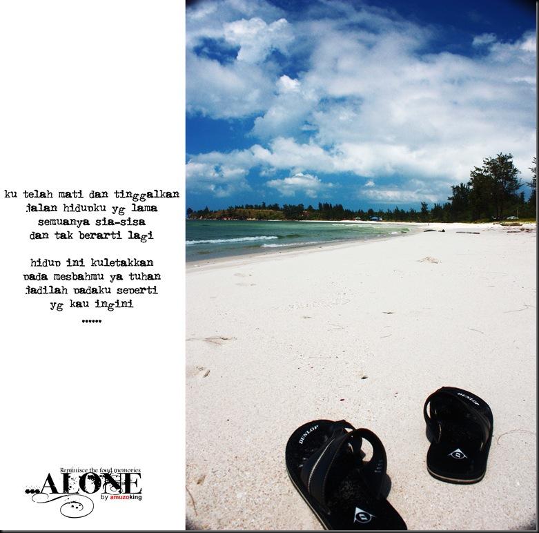 IMG_0752 alone