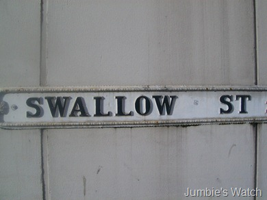 Sawllow
