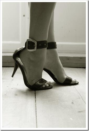 shoe[4]