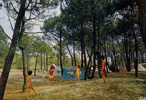 Cartes Postales Pop et  Kitsch des années 50, 70 et 70 Excursions