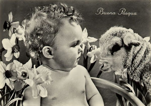 Cartes Postales Pop et  Kitsch des annes 50, 70 et 70 Childrens and animals / Enfants et animaux