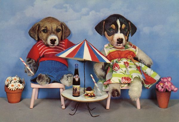 Cartes Postales Pop et  Kitsch des années 50, 70 et 70 - Pop and kitsch vintage postcards from the fifties, the sixties and the seventies : Une vie de chien