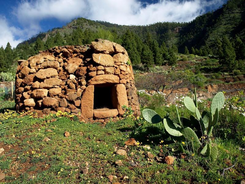 Foto de Tenerife. Araya - Parque Recreativo Los Brezos - Araya