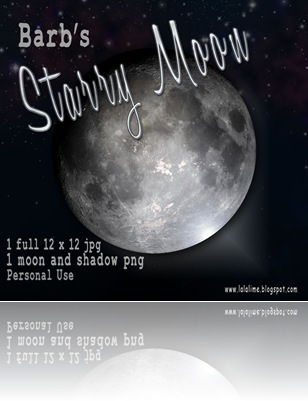 bderksen_starrymoon_prev
