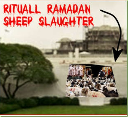 ramadam sheep slaughter