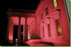 pink house_thumb[1]