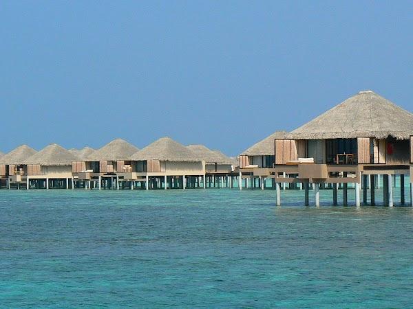 Cazare Maldive: Vadoo Island