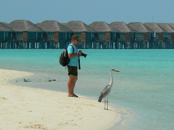 Cazare Maldive: Velassaru ready to shoot