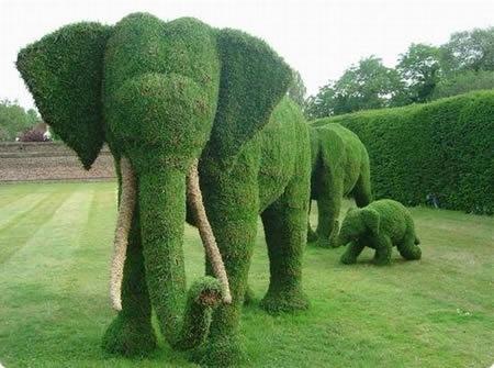 a96735_elefante