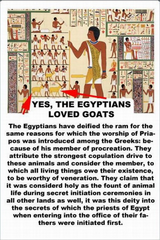 facts about the goat -2147483642