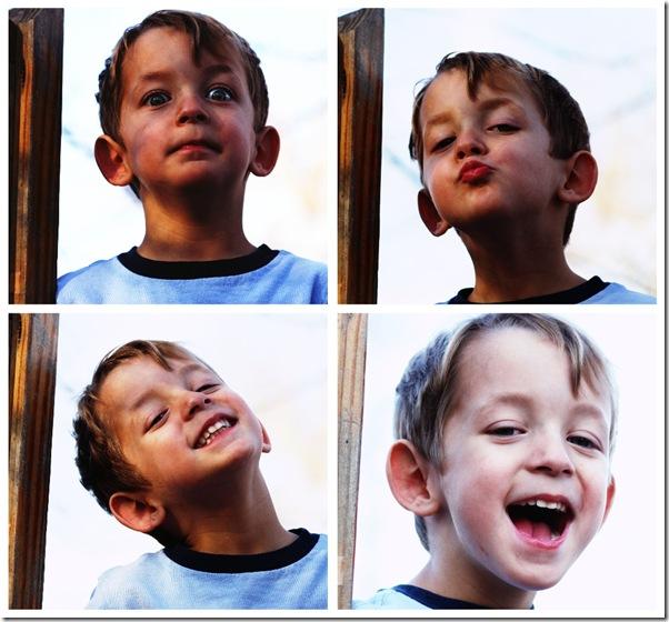 davis collage
