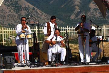 Music at Llama Fest
