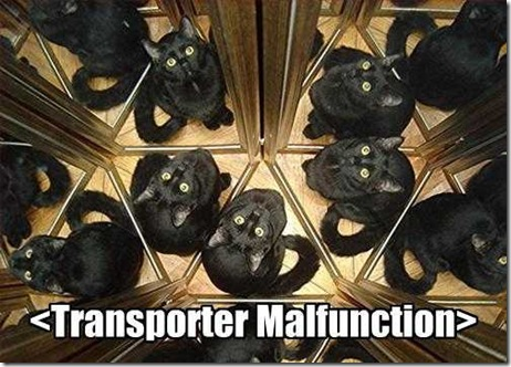 Pictures of Funny Animals (funny cat): Transporter Malfunction Funny Cat